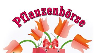 Pflanzenbörse April 2019